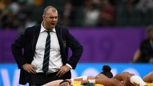 Michael Cheika stepped down as Australia coach after last year's World Cup