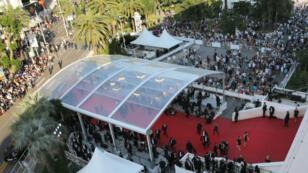 السجاد الأحمر يغطي مدرج قصر المهرجانات