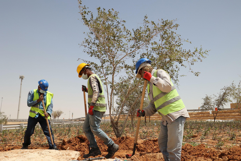 Des ouvriers plantent des arbres près d'une autoroute à Riyad, en Arabie saoudite, le 29 mars 2021.