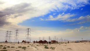 Des températures de 54 °C ont été relevées au Koweit.