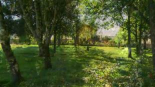 """Des pelouses et des arbres ornent le """"cimetière naturel"""" de Souché, à Niort, (Deux-Sèvres)."""