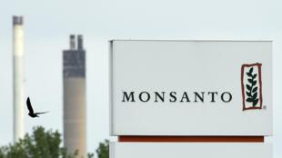 Le tribunal qui se réunit pour juger Monsanto n'a aucune légitimité, mais réunit de vrais magistrats
