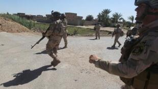 دورية للجيش العراقي في الكرمة غرب بغداد شرق محافظة الأنبار، في 26 أبريل 2015