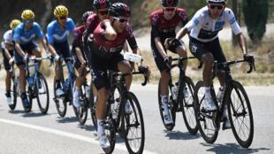 Un bidon lancé par terre lors d'une étape du Tour France de 2019, près de Gap