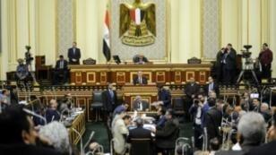 جلسة للبرلمان المصري في القاهرة في 13 فبراير/شباط 2019