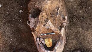 Une momie à langue d'or découverte près d'Alexandrie (Egypte), photo diffusée le 29 janvier 2021