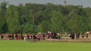 Des Rohingyas de l'État Rakhine, région birmane à majorité musulmane, stoppés à la frontière avec le Bangladesh le 25 août.