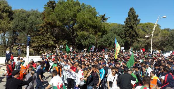Répondant à l'appel des réseaux sociaux, Salah aussi manifeste chaque vendredi à Tipasa, à 70 kilomètres à l'ouest d'Alger.