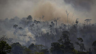 Smoke rises from forest fires in Altamira, in Brazil's Amazon region, in August 2019