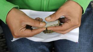 En 2014, 4,6 millions de Français ayant connu au moins un épisode de consommation de cannabis en 2014, selon l'Observatoire français des drogues et des toxicomanies