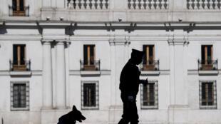 Un policía con un perro frente al Palacio de La Moneda, en Santiago, el 13 de mayo de 2020