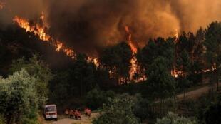 Varios bomberos combaten un incendio forestal en Oleiros, Castelo Branco, centro de Portugal, el 26 de julio de 2020.