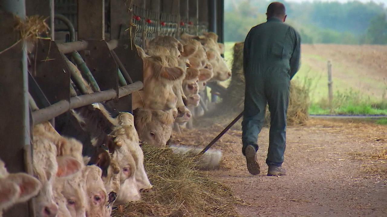 Agriculture française, l'oubliée de la crise?