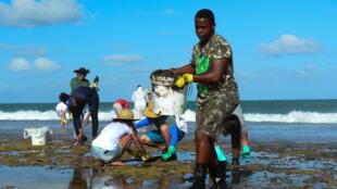 Un hombre trabaja para eliminar la mancha de petróleo en la playa Muro Alto en Tamandare, estado de Pernambuco, Brasil, el 19 de octubre de 2019.