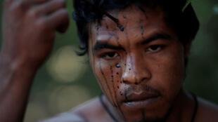 Paulo Paulino, membre de la tribu indigène Guadajajara, a été tué le 1er novembre 2019 par des trafiquants.