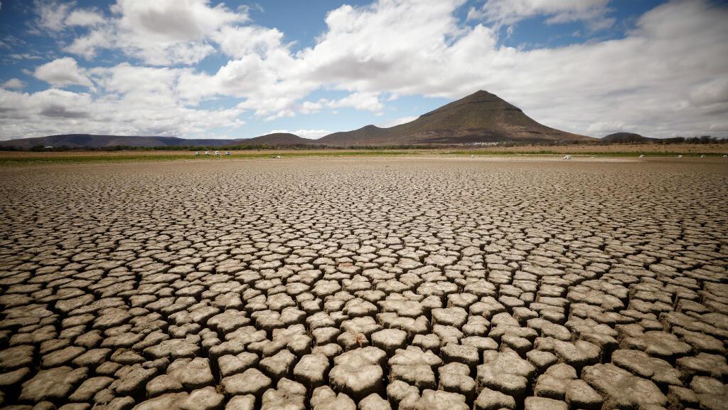 Una sequía afecta desde hace semanas una región de Sud-África con consecuencias como esta presa totalmente seca en una imagen tomada el 14 de noviembre de 2019 Cracks are seen in the dried up municipal dam in drought-stricken Graaff-Reinet, South Africa, November 14, 2019