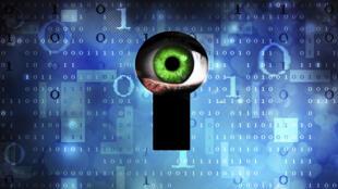 Le développement du logiciel Detekt a pris plusieurs années.