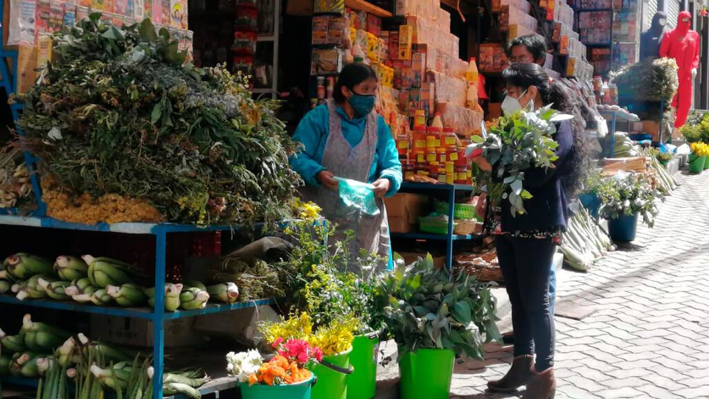 La directora de la Medicina Tradicional del ministerio de Salud, Maritza Patzi, compra plantas medicinales en la calle de las Brujas de La Paz.