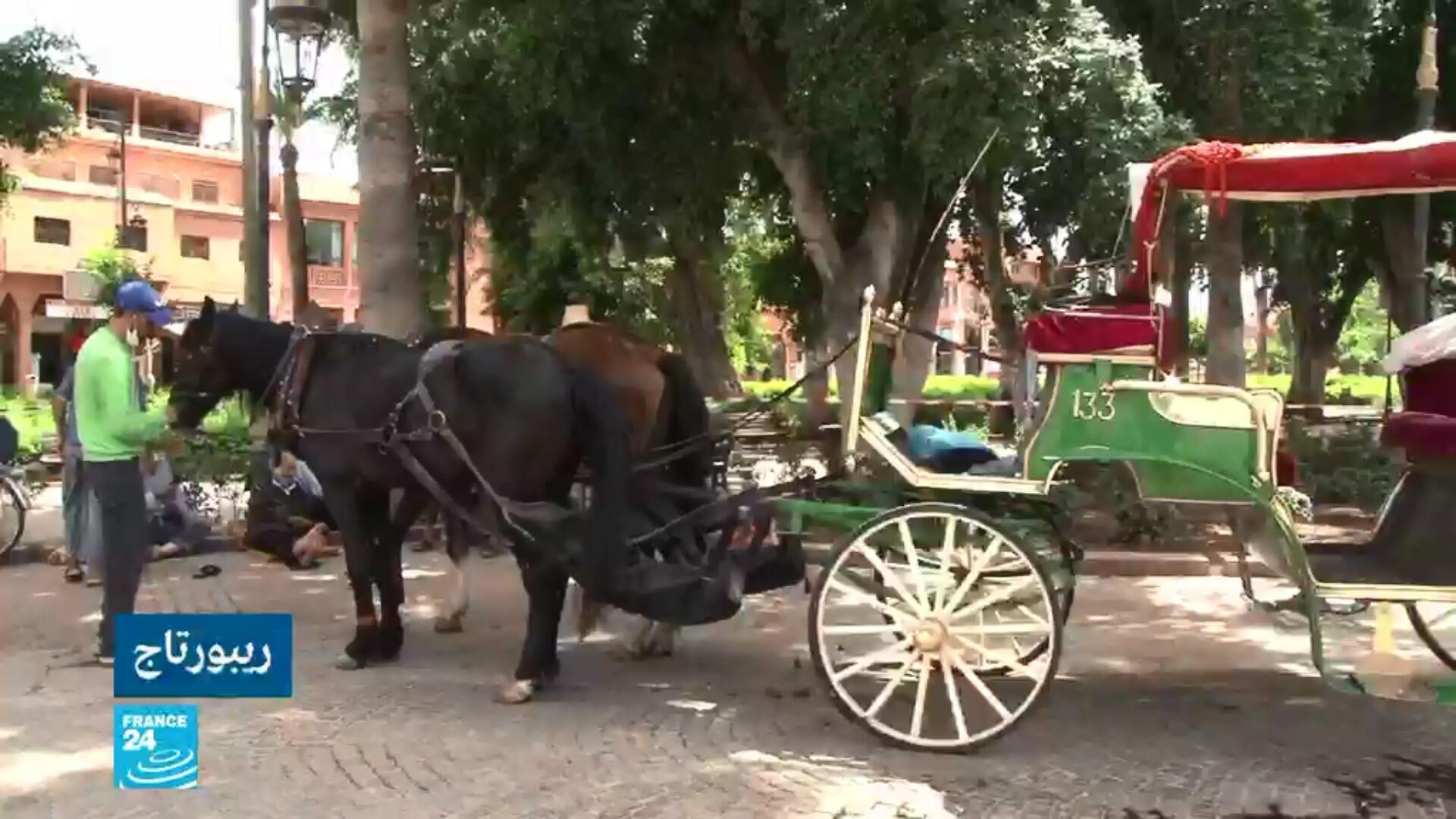 صورة ملتقطة من تقرير عن مدينة مراكش المغربية