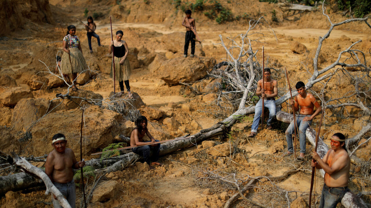 deforestacion brasil indigenas amazonas