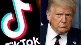 Montage photos du 1er août 2020 montrant le logo du réseau social TikTok et le président américain Donald Trump