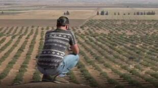 kurdes-reportage-m