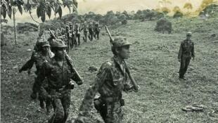 """قوات """"الفارك"""" تشكلت عام 1964 في وسط كولومبيا لمحاربة الظلم الاجتماعي والاقتصادي"""