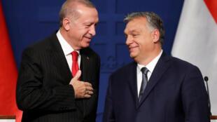 الرئيس التركي رجب طيب أردوغان والرئيس المجري أوربان، في بودابست 7 نوفمبر/تشرين الثاني