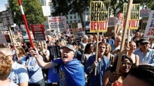 متظاهرون مناهضون لخروج بريطانيا من الاتحاد الأوروبي، لندن- 31 أغسطس/آب 2019