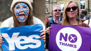 """Supporters du """"Oui"""" et du """"Non"""" lors du référendum en Écosse."""