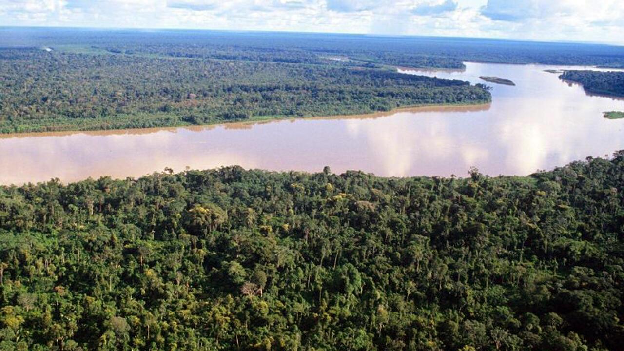 Ucayali en la Amazonía peruana es una región fronteriza con Brasil. Al sur, esta región es vecina de Madre de Dios.