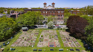 This aerial view of Montreal's newly reopened De Lorimier community garden was taken on May 22, 2020