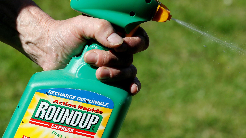 Un hombre utiliza el aerosol Roundup de Monsanto que contiene glifosato en un jardín en Burdeos, Francia, 1 de junio de 2019.