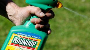 Un hombre utiliza el aerosol Roundup de Monsanto que contiene glifosato en un jardín en Burdeos, Francia, el 1 de junio de 2019.