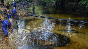 Trabajadores de la petrolera estatal Ecopetrol limpian el río Lizama, que se vio afectado por una fuga de petróleo en Barrancabermeja, departamento de Santander, Colombia. La situación causó la muerte de cerca de 2.400 animales.