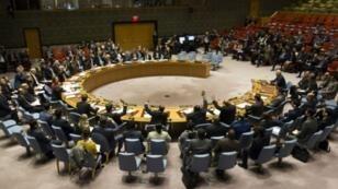 مجلس الأمن الدولي في نيويورك.