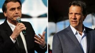 المرشح اليساري فرناندو حداد واليميني المتشدد جايير بولسونارو