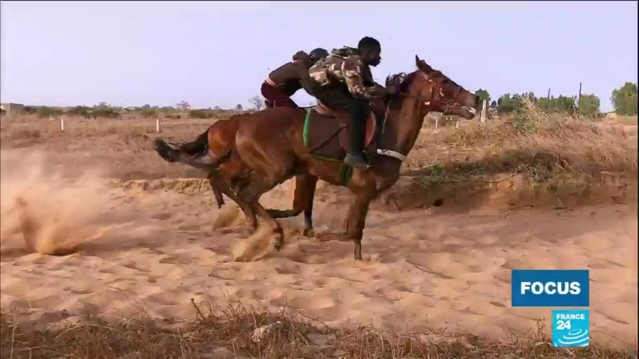 Focus - The growing appeal of horse racing for Senegal's youth