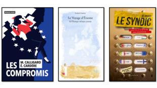 Trois livres sortant en France cet été nous racontent l'Union européenne avec une légèreté et une originalité inattendues.