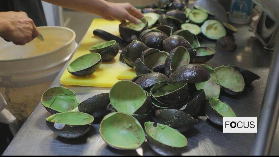 Restaurants In Us City Of Austin Aim For Zero Food Waste Focus
