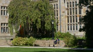 """À l'université de Yale, dans le Connecticut, les positions de Donald Trump """"génèrent de l'angoisse"""" parmi les étudiants internationaux."""