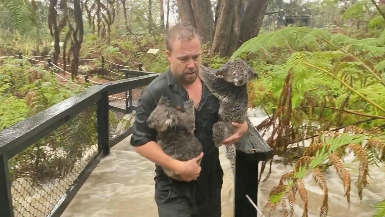 El Australian Reptile Park, que se encuentra en Somersby, en Nueva Gales del Sur, resultó inundado por las fuertes lluvias.
