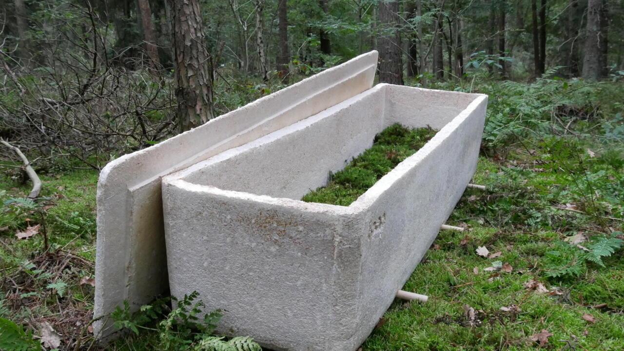 Dutch inventor's mushroom coffins turn bodies into compost - France 24