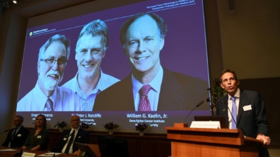 Hasil gambar untuk Le Nobel de médecine aux Américains William Kaelin et Gregg Semenza et au Britannique Peter Ratcliffe