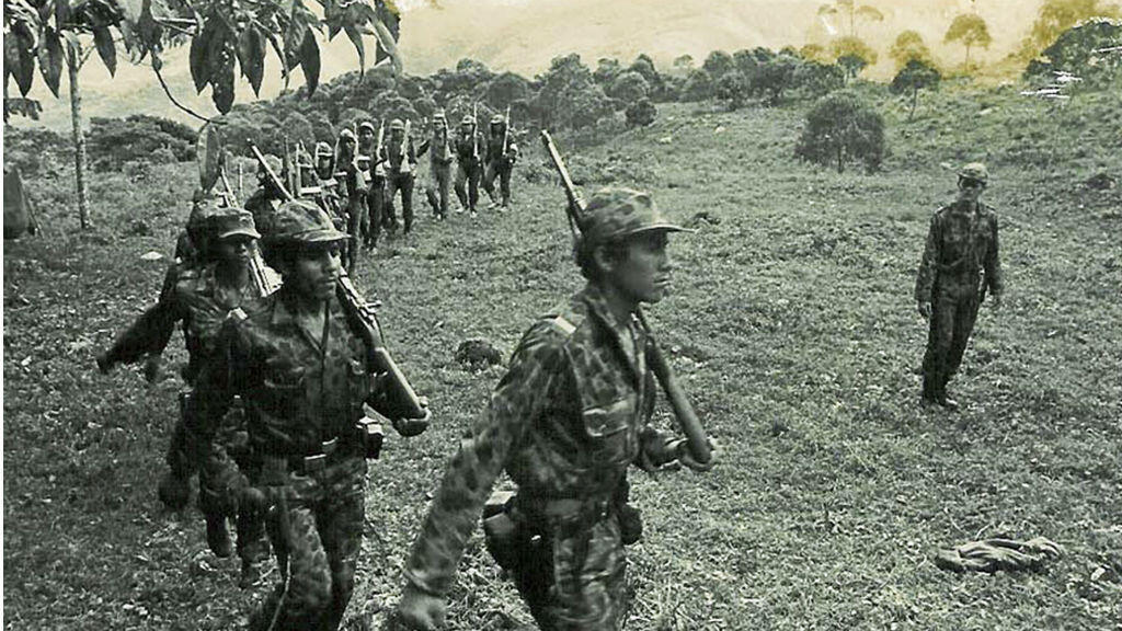 Les Farc avaient pris les armes en 1964 dans le centre de la Colombie pour lutter contre les inégalités sociales et économiques.