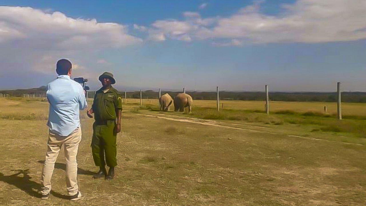El periodista de France 24, David González, entrevista a Jeremy, cuidador de Najin y Fatu (al fondo): las dos últimas supervivientes del rinoceronte blanco del norte en el mundo. Parque Ol Pejeta en Nanyuki, Kenia, el 17 de septiembre de 2019.