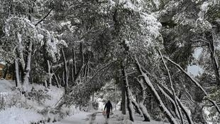 Greece's weather agency said snowfall would continue on Tuesday