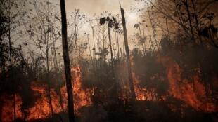 حرائق غابات الأمازون بالبرازيل. 23 أغسطس/آب 2019.
