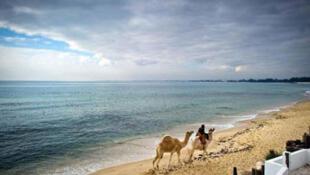 La plage de Hammamet, non loin de Sousse.