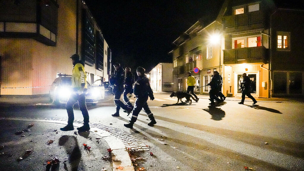 Norway bow and arrow attacks: Danish suspect charged as death toll reaches five